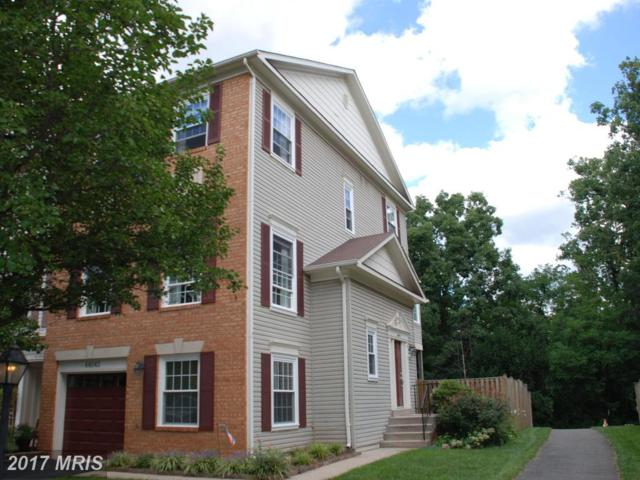 44042 Gala Circle, Ashburn, VA 20147 (#LO10050701) :: Pearson Smith Realty