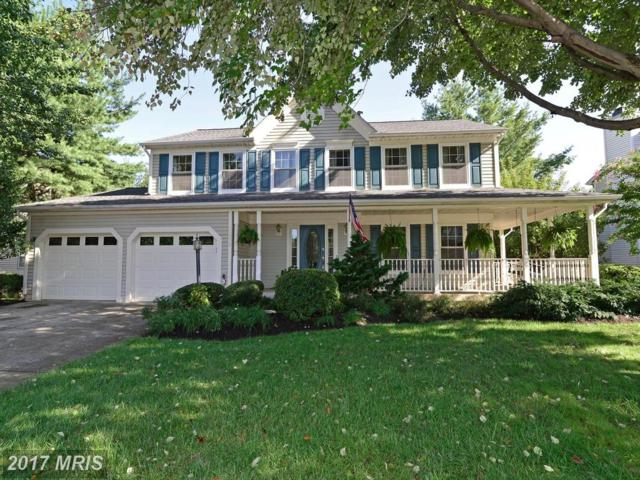 46576 Hampshire Station Drive, Sterling, VA 20165 (#LO10051383) :: Pearson Smith Realty