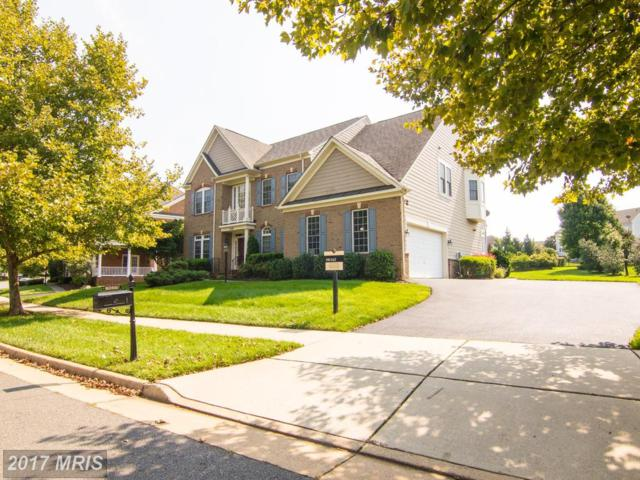 43440 Riverpoint Drive, Leesburg, VA 20176 (#LO10051496) :: Pearson Smith Realty