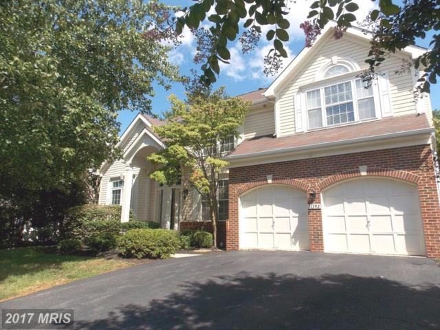 21392 Maidsville Court, Ashburn, VA 20147 (#LO10051777) :: Pearson Smith Realty