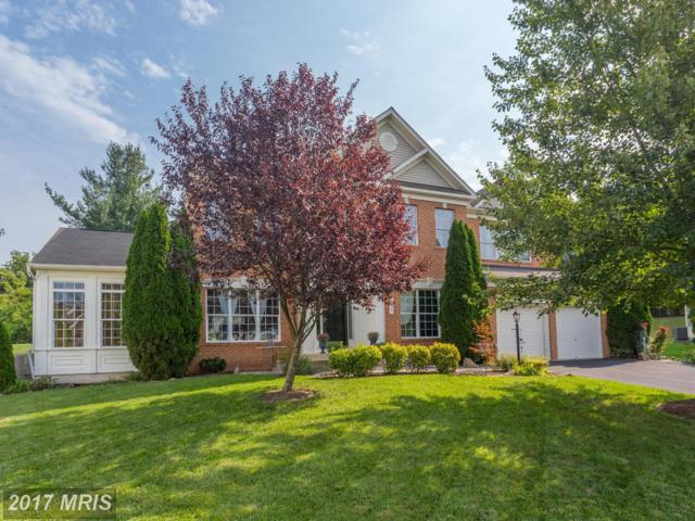 529 Skyline Drive, Purcellville, VA 20132 (#LO10051856) :: Pearson Smith Realty