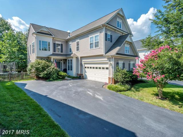 21993 Stonestile Place, Broadlands, VA 20148 (#LO10051862) :: Wicker Homes Group