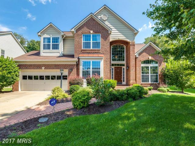 47811 Blockhouse Point Place, Sterling, VA 20165 (#LO10051986) :: LoCoMusings