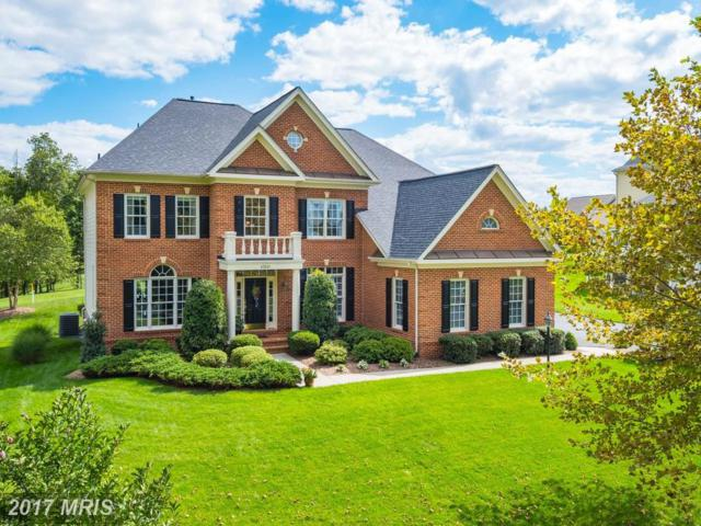 43246 Parkers Ridge Drive, Leesburg, VA 20176 (#LO10052540) :: Wicker Homes Group