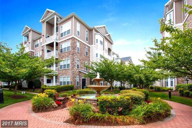 508 Sunset View Terrace SE #203, Leesburg, VA 20175 (#LO10052925) :: Pearson Smith Realty