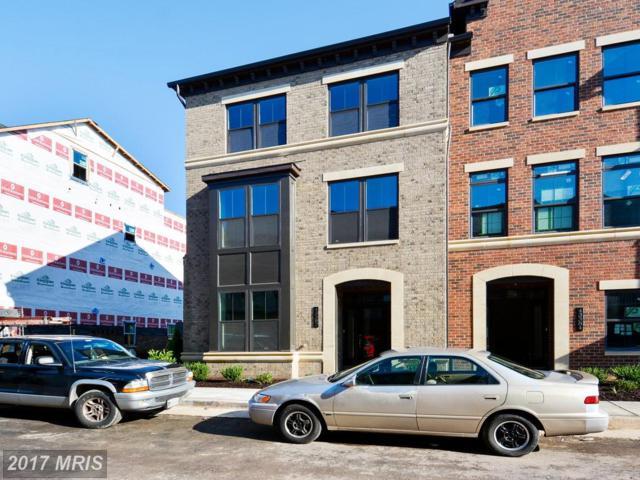 43382 Whitehead Terrace, Ashburn, VA 20148 (#LO10053006) :: Pearson Smith Realty
