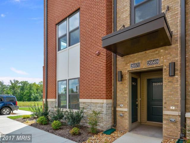 20571 Milbridge Terrace #20571, Ashburn, VA 20147 (#LO10053069) :: LoCoMusings
