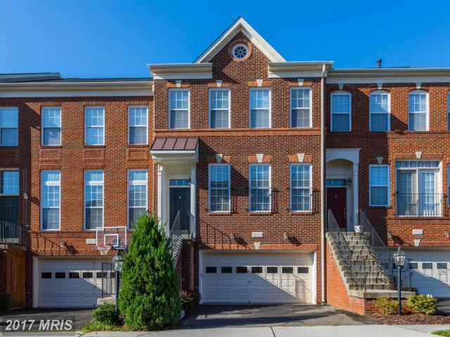 43011 Coulwood Terrace, Broadlands, VA 20148 (#LO10053188) :: Pearson Smith Realty