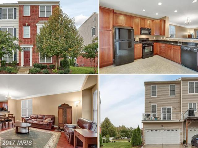 42858 Alumni Terrace, Chantilly, VA 20152 (#LO10053904) :: Mosaic Realty Group