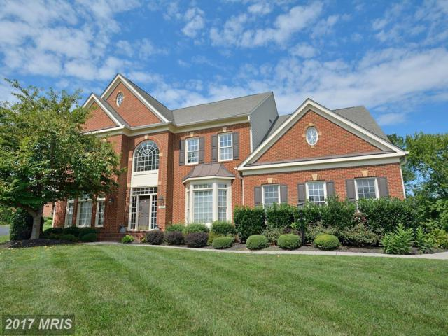 18749 Upper Meadow Drive, Leesburg, VA 20176 (#LO10054979) :: Wicker Homes Group