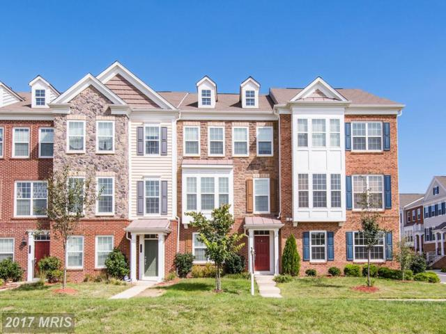 43595 Taylor Tree Terrace, Chantilly, VA 20152 (#LO10055502) :: LoCoMusings