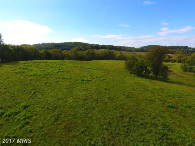 Clarkes Gap Road Parcel C, Waterford, VA 20197 (#LO10056435) :: Pearson Smith Realty