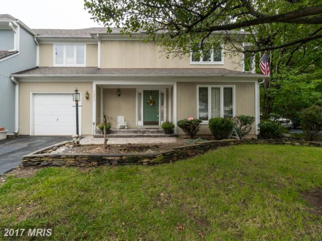 20865 Channel Court, Sterling, VA 20165 (#LO10056845) :: LoCoMusings