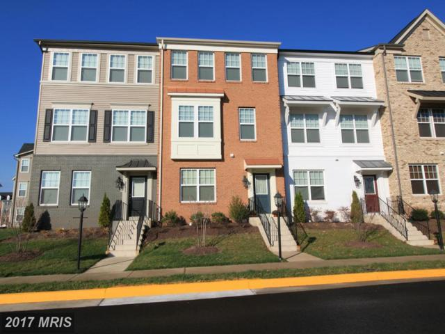 25497 Cancello Terrace, Chantilly, VA 20152 (#LO10057388) :: Pearson Smith Realty