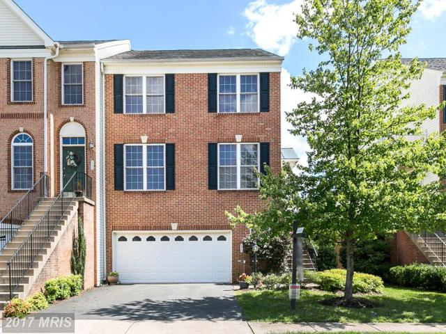 110 Ivy Hills Terrace, Purcellville, VA 20132 (#LO10058007) :: Pearson Smith Realty