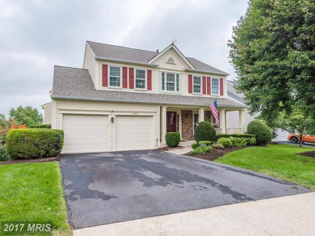 46416 Thornwood Court, Sterling, VA 20165 (#LO10058063) :: Pearson Smith Realty
