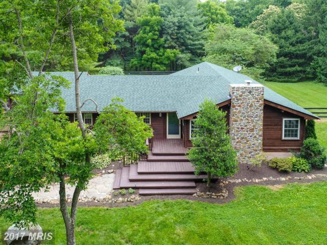 36568 Osburn Road, Purcellville, VA 20132 (#LO10058086) :: Provident Real Estate