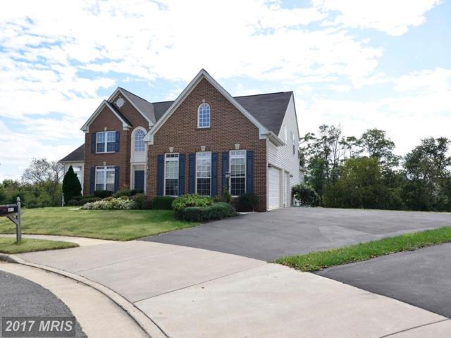 34 Lange Drive, Lovettsville, VA 20180 (#LO10058385) :: Pearson Smith Realty