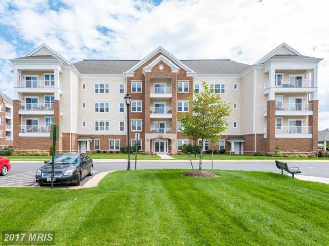 20610 Hope Spring Terrace #402, Ashburn, VA 20147 (#LO10058532) :: Pearson Smith Realty