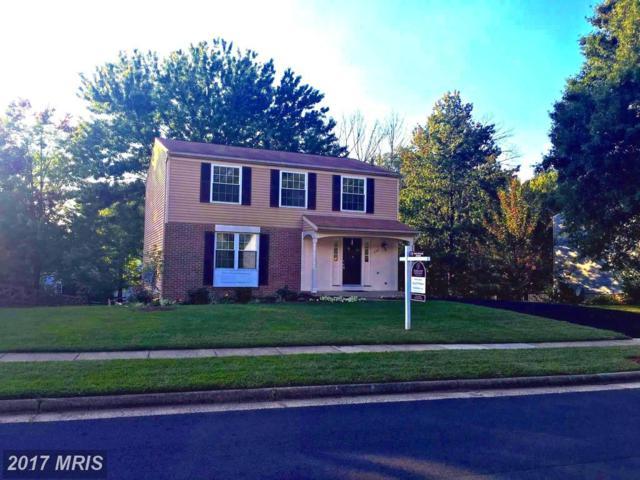 240 Silverleaf Drive, Sterling, VA 20164 (#LO10059314) :: Provident Real Estate