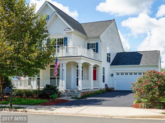 13531 Elysian Drive, Leesburg, VA 20176 (#LO10059532) :: Provident Real Estate