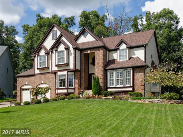 43248 Preston Court, Ashburn, VA 20147 (#LO10059754) :: Wicker Homes Group