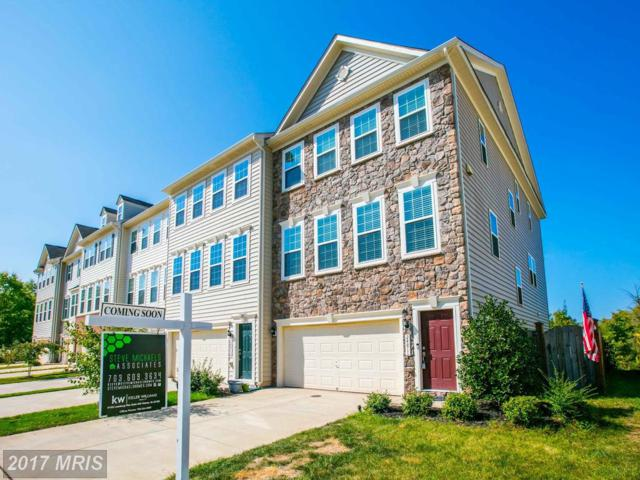 24811 Mason Dale Terrace, Chantilly, VA 20152 (#LO10060056) :: Pearson Smith Realty