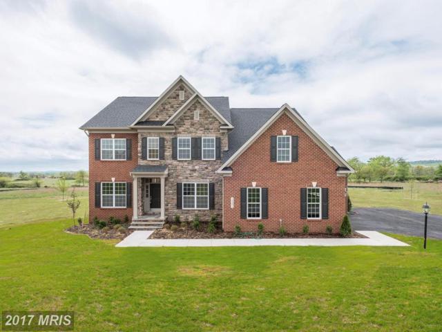 14491 Falconaire Place, Leesburg, VA 20176 (#LO10060067) :: Provident Real Estate