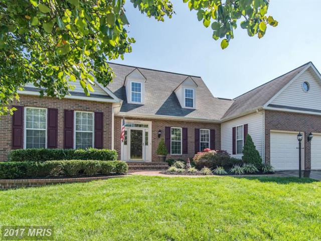 20984 Deer Run Way, Ashburn, VA 20147 (#LO10060245) :: Pearson Smith Realty