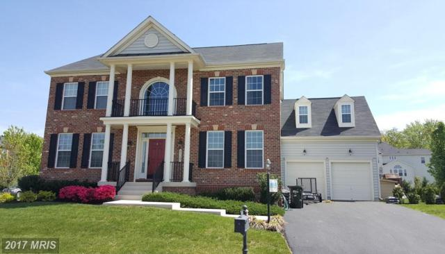 21107 Hooded Crow Drive, Leesburg, VA 20175 (#LO10060254) :: Mosaic Realty Group
