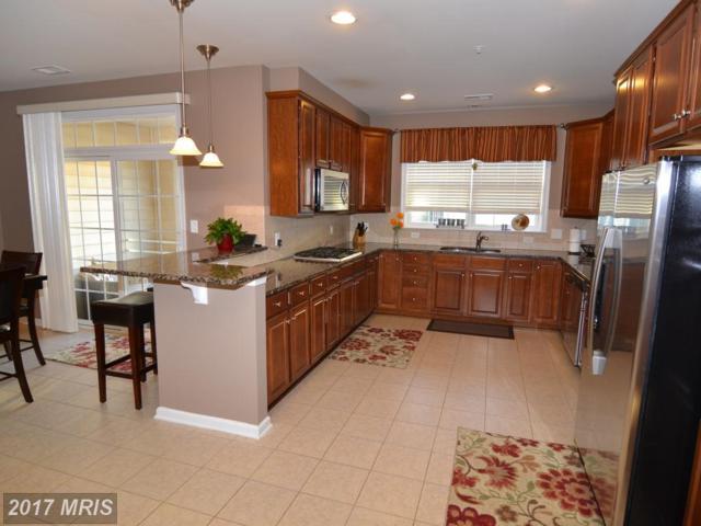 22670 Ferncrest Terrace, Ashburn, VA 20148 (#LO10060334) :: The Hagarty Real Estate Team