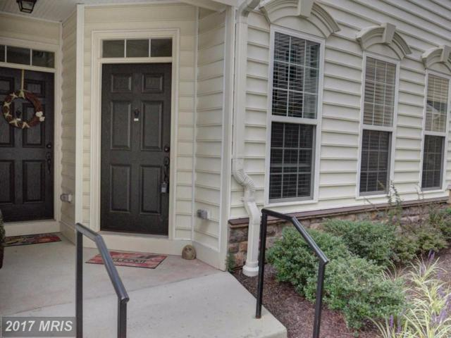 42322 San Juan Terrace #42322, Aldie, VA 20105 (#LO10060453) :: Pearson Smith Realty