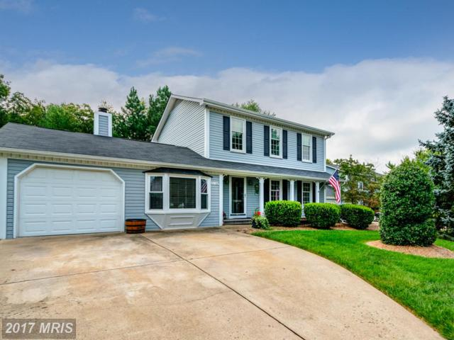 21158 Morning Way, Sterling, VA 20164 (#LO10060590) :: Provident Real Estate