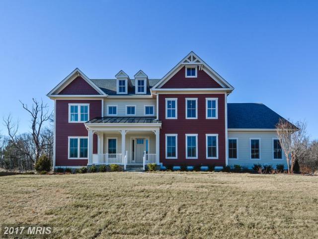 23061 Chambourcin Place, Ashburn, VA 20148 (#LO10060827) :: A-K Real Estate