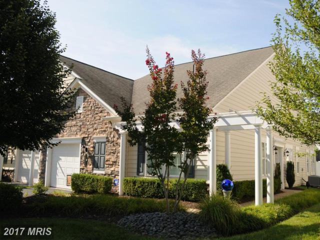 20585 Rosewood Manor Square, Ashburn, VA 20147 (#LO10061050) :: Century 21 New Millennium