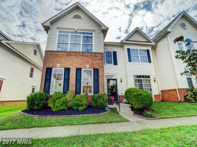 44221 Shehawken Terrace, Ashburn, VA 20147 (#LO10061201) :: Pearson Smith Realty