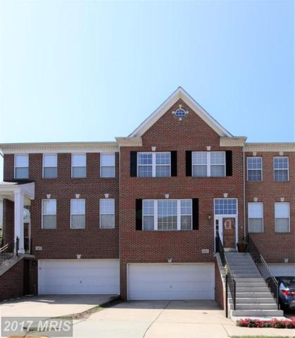 43075 Shadow Terrace, Leesburg, VA 20176 (#LO10062032) :: Labrador Real Estate Team