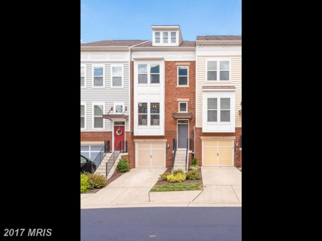42660 New Dawn Terrace, Ashburn, VA 20148 (#LO10062235) :: LoCoMusings
