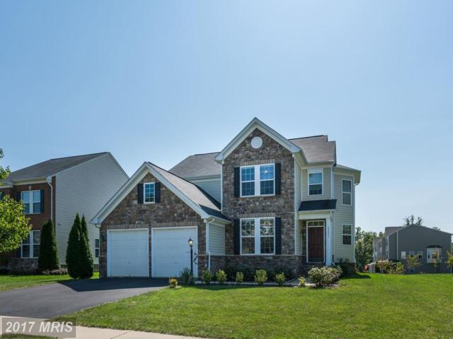 42451 Nickens Place, Ashburn, VA 20148 (#LO10062300) :: Century 21 New Millennium