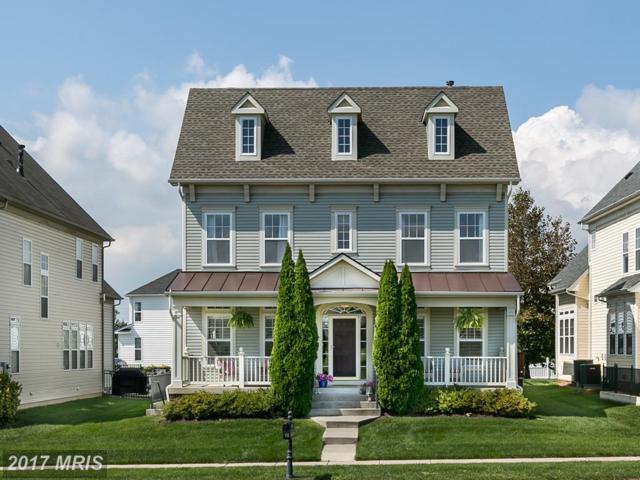 25146 Mineral Springs Circle, Aldie, VA 20105 (#LO10062439) :: Wicker Homes Group