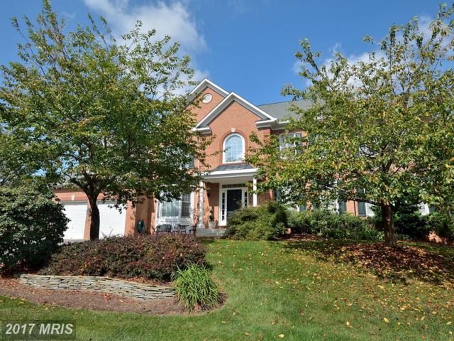 21991 Hyde Park Drive, Ashburn, VA 20147 (#LO10062565) :: Century 21 New Millennium