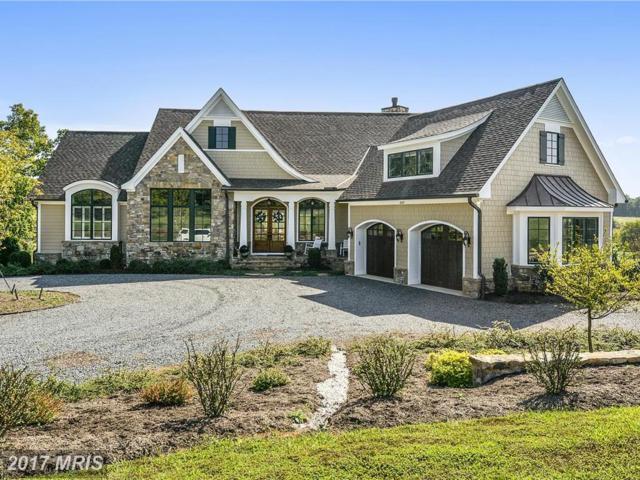 20271 Gileswood Farm Lane, Purcellville, VA 20132 (#LO10062751) :: Pearson Smith Realty