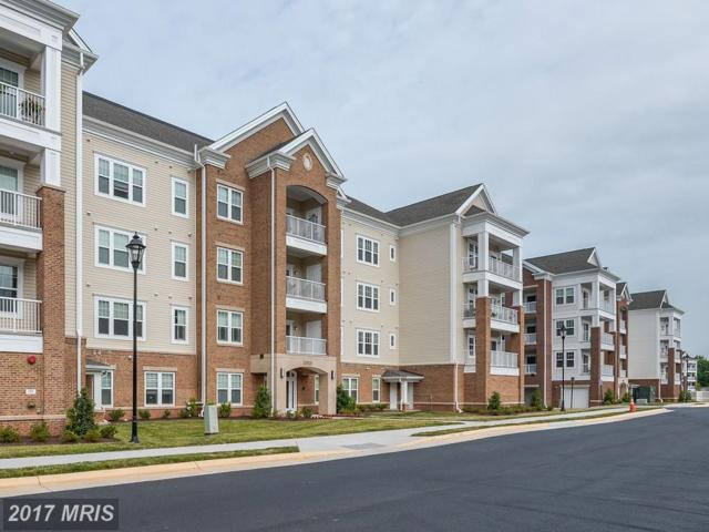 20515 Little Creek Terrace #207, Ashburn, VA 20147 (#LO10063287) :: Wicker Homes Group