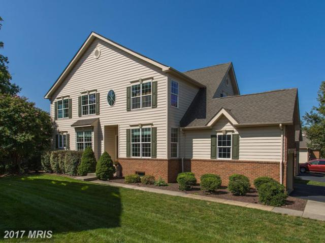 43231 Baltusrol Terrace, Ashburn, VA 20147 (#LO10063326) :: Labrador Real Estate Team