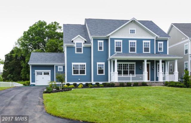 24516 Lavender Grove Drive, Aldie, VA 20105 (#LO10063743) :: LoCoMusings