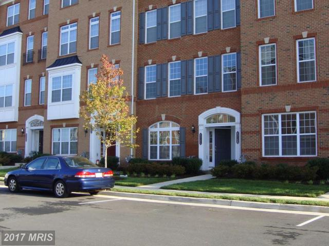 43146 Thoroughfare Gap Terrace, Ashburn, VA 20148 (#LO10063889) :: LoCoMusings