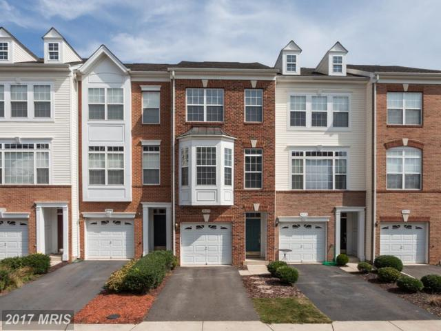 20470 Alicent Terrace, Ashburn, VA 20147 (#LO10063954) :: Pearson Smith Realty