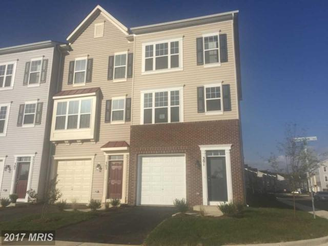301 Upper Brook Ter, Purcellville, VA 20132 (#LO10064118) :: Long & Foster