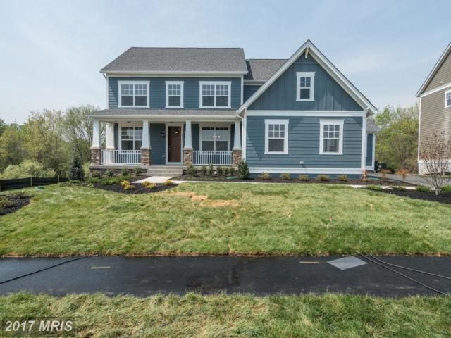 40781 Foxtail Fields Drive, Aldie, VA 20105 (#LO10064236) :: The Dwell Well Group