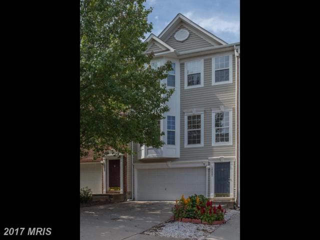 18457 Sierra Springs Square, Leesburg, VA 20176 (#LO10064392) :: The Dwell Well Group